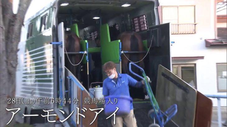 三冠馬たちが決戦の地・東京競馬場入り【ジャパンカップ2020】