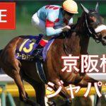 【競馬中継】『 ジャパンC , 京阪杯 』