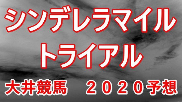 シンデレラマイルトライアル【大井競馬2020予想】
