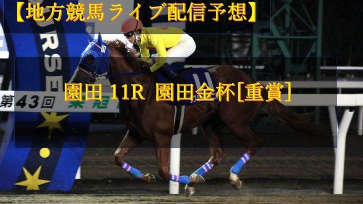 【地方競馬ライブ配信予想】園田11R 園田金杯[重賞]