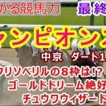 【競馬】チャンピオンズカップ2020 枠順確定後最終考察動画 【競馬の専門学校】