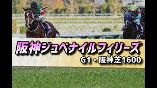 【競馬展望】2020 阪神ジュベナイルフィリーズ「白い一族の弱みを握ったよ」