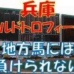【地方競馬】兵庫ゴールドトロフィー2020予想 推しの中央馬