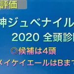 【競馬予想】 阪神ジュベナイルフィリーズ 2020 全頭診断 事前予想 阪神JF