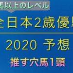 【競馬予想】 地方交流重賞 全日本2歳優駿 2020 予想