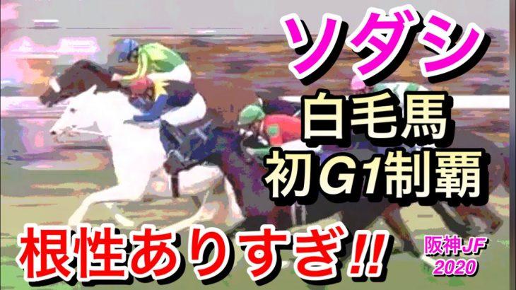 【競馬】ソダシが2歳女王に!白毛馬初G1制覇達成!ファンも歓喜【阪神ジュベナイルフィリーズ2020】