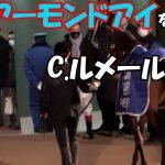 【競馬】アーモンドアイ引退式で地下馬道に行く前に最後にアーモンドアイを撫でるC.ルメール騎手 現地映像