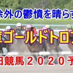 兵庫ゴールドトロフィー【園田競馬2020予想】JBC除外の鬱憤を晴らす!