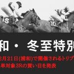 【浦和競馬】川島のKJブランドって何??賞・冬至特別・暮来月特別┃12月21日トリプル馬単対象3レースの予想