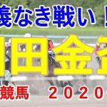 園田金盃【園田競馬2020予想】仁義なき戦い!?