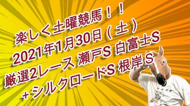 楽しく土曜競馬!!ユメノ指数解析完了!2021年1月30日(土)厳選2レース(瀬戸S、白富士S)+シルクロードS、根岸S予想大公開!