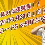勝負の日曜競馬!!ユメノ指数解析完了!2021年1月31日(日)厳選5レース(シルクロードS、根岸S、美濃S、節分S、巌流島S)予想大公開!
