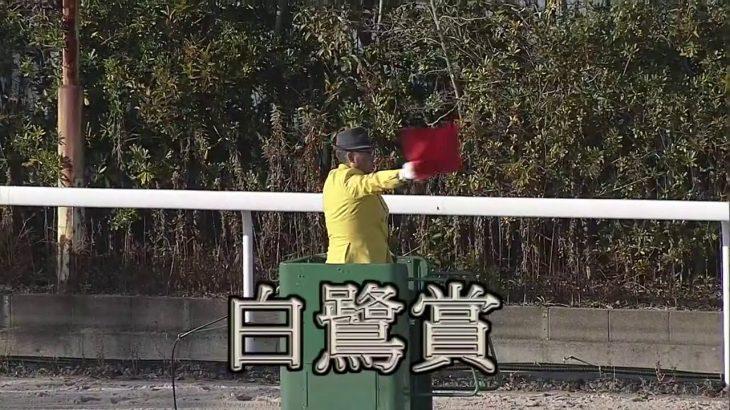 【姫路競馬】白鷺賞2021 ジンギ2021年初戦