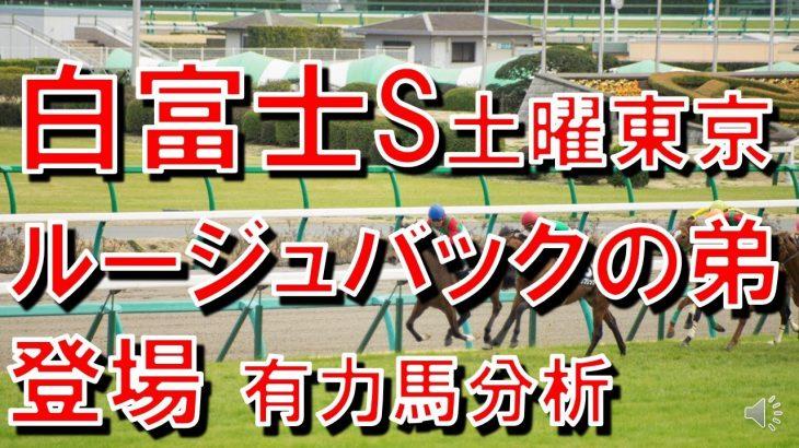 競馬歴30年 2021白富士ステークス有力馬分析 土曜日東京