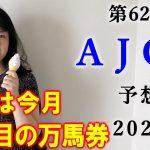 【競馬】AJCC 2021 予想(土曜若駒S&初富士Sは3連複ダブル的中!!) ヨーコヨソー