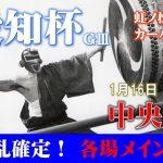 【TEKKENオリジン】1月16日(土)中央競馬極秘情報