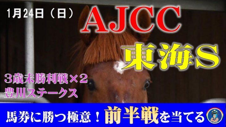 【TEKKENオリジン】1月24日(日)中央競馬無料予想