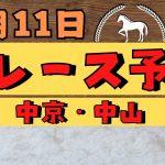 【週間競馬予想TV】2021年1月11日(月)) 中央競馬全レース予想〜狙い馬・推奨レース〜を公開。中京・中山の平場、特別戦、重賞レース。注目馬を考察。