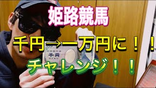 【競馬】姫路競馬で1000円から10000円に増やすチャレンジ!! 地方競馬は天使なのか?悪魔なのか??