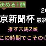 【競馬予想】 東京新聞杯 2021 最終本予想