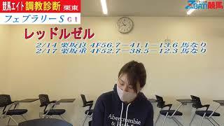 【競馬エイト調教診断】フェブラリーS(ミッキ&稲垣)