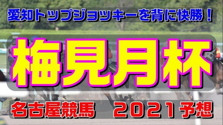 梅見月杯【名古屋競馬2021予想】愛知トップジョッキーを背に快勝!