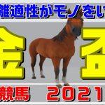 金盃【大井競馬2021予想】長距離適性がモノをいう!