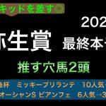 【競馬予想】 弥生賞 2021 最終本予想