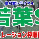 2021 若葉ステークス シミュレーション 枠順確定 【競馬予想】