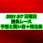 【競馬予想】2021 3/7 日曜日 勝負レース 予想と買い目+特注馬
