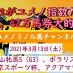【競馬予想】2021年3月13日(土)の中山牝馬S、ポラリスS、中京スポーツ杯、アクアマリンSの競馬予想を大公開!先週42万馬券的中!!