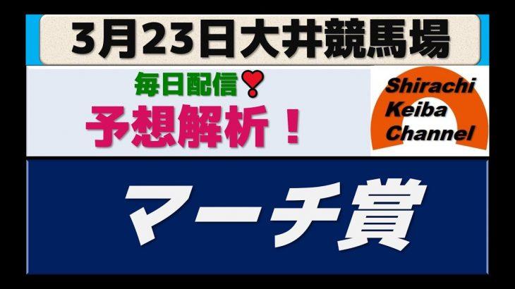 【競馬予想】マーチ賞2021年3月23日 大井競馬場