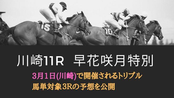 川崎競馬・忘れ雪特別・早花咲月特別・蓮華草賞┃トリプル馬単対象3レースの予想