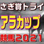 ティアラカップ【浦和競馬2021予想】上位拮抗で堅いレースか?