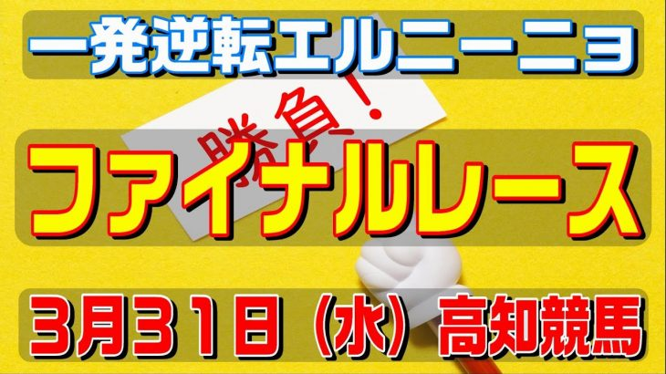 ファイナルレース【3月31日(水)】高知競馬予想
