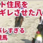 【笠松競馬八百長】岐阜県警に八百長情報を提供したけど無視されたレース