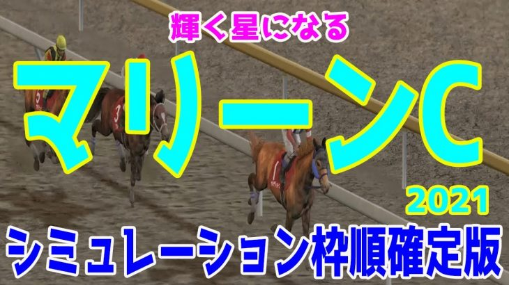 2021 マリーンカップ シミュレーション 枠順確定【競馬予想】地方競馬