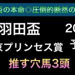 【競馬予想】 東京プリンセス賞 羽田盃 2021 予想