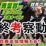 【競馬】青葉賞2021 馬券の中心はノーザンF系で間違いなし【競馬の専門学校】