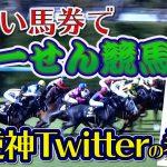 【競馬】Twitterの買い目(馬券)が本当に当たらない病?