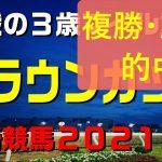 クラウンカップ【川崎競馬2021予想】主力拮抗の3歳マイル重賞