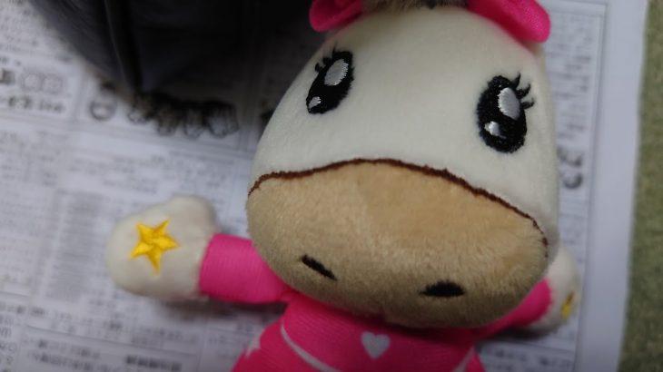 園田競馬場で姫路競馬を買う。(まったりしてました)