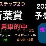 【競馬予想】 青葉賞 2021 予想