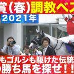 【2021年・天皇賞(春)を攻略へ!】競馬エイト高橋トラックマンの調教診断