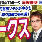 【競馬ブック】オークス 2021 予想【TMトーク】(美浦)