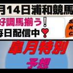 【競馬予想】皐月特別2021年5月14日 浦和競馬場