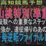 【2021年5月22日 高知競馬予想】レア距離重賞山桃特別、2強vsサンシェリダン