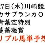 【川崎競馬トリプル馬単予想】カサブランカオープン・青葉空特別・蔓薔薇賞【2021年5月27日】