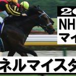 「同じ勝負服の2頭!ソングラインかシュネルマイスターか」【NHKマイルカップ2021】