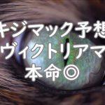 【競馬】ヴィクトリアマイル VM キジマック競馬予想